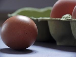 egg-1803368_1280